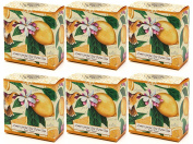 Lemon Garden Shea Butter Round Bar Soap - 100ml / 6 per Pack