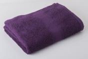 RPT - Aubergine Egyptian Cotton Face Flannel 500 Gsm 2 Pack