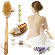 Beauty Dry Skin Bath Brush - Natural Bristles Back Scrubber For Exfoliating & Cellulite - With Long Bamboo Handle For Bathing & Shower