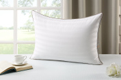 ALLRANGE Luxury White Down Pillow, 600 Fill Power, 100%Cotton Down Proof Cover, White, OEKO-TEX, RDS Certified, King Size