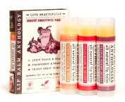 Fruit Smoothie Lip Balm Set - All Natural - Includes 3 Smoothie Flavours