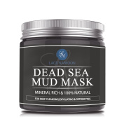 Dead Sea Mud Mask for Facial Treatment Deep Pore Cleansing by Lagunamoon
