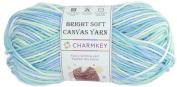 Charmkey Bright Soft Canvas Yarn 4 Medium Self Striping Lustrous 100 Percent Acrylic Mercerized 4 Ply Knitting Baby Yarn Ball for Sweater Garment Scarf Sock, 1 Skein, 100ml