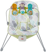 Fisher-Price Baby's Bouncer, Gender Neutral