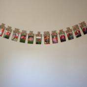Nicerokaka Kids 1-12 Month Birthday memento Banner Photo Albums