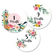 Monthly Baby Stickers for Girls Milestone, Floral Design (12 stickers) by Harlow & Hunter