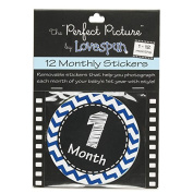 The Perfect Picture 12 Month Sticker Set, Chevron