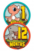 Wholesale Princess Dinosaur Theme Baby Monthly Stickers - Set of 12