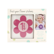 Tiny Ideas First Year Monthly Milestone Flowers Photo Sharing Baby Belly Stickers, 1-12 Months, Pink