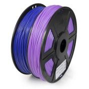 WYZworks ABS 1.75mm 2 Colours / Dual ( PURPLE & VIOLET ) Premium 3D Printer Filament - Dimensional Accuracy +/- 0.05mm 1kg / 2.2lb + [ Multiple Colour Options Available ]