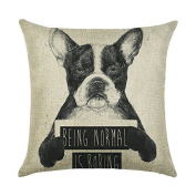 DECORLUTION Boston Terrier Letter Being Normal is Boring Pattern 46cm x 46cm Cotton Linen Throw Pillow Case Cushion Cover Standard Size for Home Decorative Square Pillow Covers Cases Pillowcase
