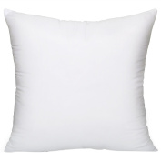 Kaimao Hypoallergenic Pillow Insert, Soft Throw Pillow Inserts, Square, 50cm x 50cm