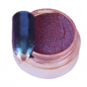 Nail Mirror Powder, Fullfun 1g/ Box Sliver Nail Glitter Powder Shinning Nail Mirror Powder Makeup Art DIY Chrome Pigment