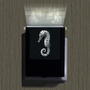 Seahorse-2