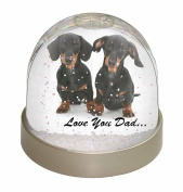 Dachshund Dogs 'Love You Dad' Photo Snow Globe Waterball Stocking Filler Gift