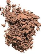 Radiant Powder Foundation SPF 23 Compact Refill10ml O60