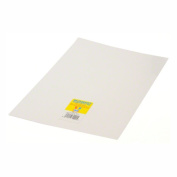Clear Polyester Sheet .060 X 19cm X 28cm