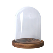 RayinblueTransparent Glass Plant Display Cloche Bell Jar Dome With Bamboo Wooden Base Tray Multi Sizes