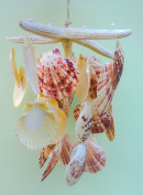Real Seashell Windchimes Starfish Hanging Scallop Shell Nautical Wind Chimes