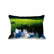 Green Grass River Pillow Covers Protector Two Sides Standard Zippered Pillowcase Pillow Sham 16x24inche for kids New Year Gift