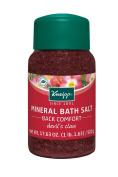 Kneipp Mineral Bath Salt Back Comfort Devils Claw, 520ml