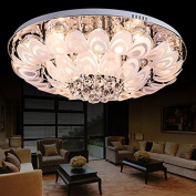 Crystal combination crystal lamp manufacturers selling modern living room lamps ceiling lamps peacock living room lamps m