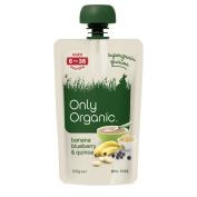 Only Organic Banana, Blueberry & Quinoa