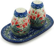 Polish Pottery Salt and Pepper Set 18cm Sprouting Tulips made by Ceramika Artystyczna