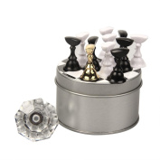 Alonea 12Pcs Chess Board Magnetic Nail Art Tip Crystal Stand Set Salon Display Holder