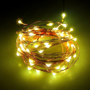 Zhangming 50 LED Fairy String Lights Waterproof with Remote 8 Mode for Xmas Wedding Home Party Decoration