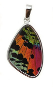 Sunset Moth Butterfly Wing Medium Pendant in Silver