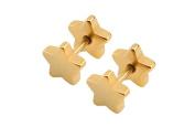 Earrings for Men Pink Gold Star Boy Mens Stud Earring 10mm