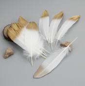 Skyseen 50PCS Gold Dipped Natural White Feathers for Various Crafts, Birthday Parties,Home Wedding and Party Dress-ups