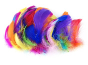 Honbay 200pcs Assorted Colour Handmade Feather for DIY Craft Wedding Home Party Decorations