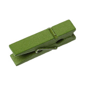 Mini Wooden Pegs, Pack of 100 – Assorted Colours – 3.5 x 1 cm olive green