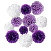 Wartoon Tissue Paper Pom Poms Flowers for Wedding Birthday Party Baby Shower Decoration, 12 pieces
