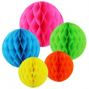 SUNSWEI 10 PCS 15cm 25cm Tissue Paper Pom-poms, Honeycomb Tissue Paper Flower Balls For Wedding Birthday Party and Baby Shower Decoration Premium Tissue Paper Pom Pom Flowers Craft Kit