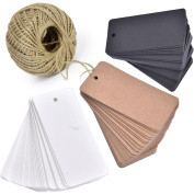 Lwestine 300pcs Kraft Paper Gift Tags, Blank Card with 30m Natural Jute Twine for Crafts & Price Tags Lables