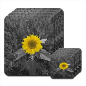 Bright Yellow Sunflower In Grey Fields Set of 4 Placemat & Coasters