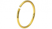 20g Surgical Steel Titanium Anodized Gold 8 mm Small Nose Ring Hoop - Nose Piercing Jewellery