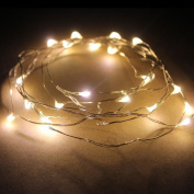 4m 40 Micro Rice Led Silver Copper Wire Fairy String Battery Light Warm White Uk