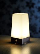Auraglow Wireless Pir Motion Sensor Lamp Battery Hallway Table Led Night Light