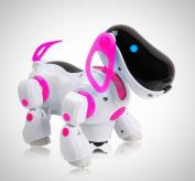 Robot Dog Toy Children Toddler Kid Indoor Game Light Sound Walking Pet Puppy