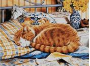 Cat in Sunday morning cross stitch kits, 14ct, Egyptian cotton thread 300x225 stitch, 65x50cm cat cross stitch kit