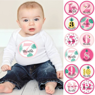 Flamingo - Party Like a Pineapple - Monthly Baby Sticker Set - 12 Piece