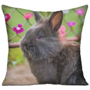 Rabbit Fluffy Flowers Best Throw Pillows For Couch 46cm X 46cm