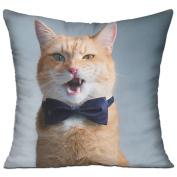 Cat Bow Cute Fun Throw Decorative Pillow Covers 46cm X 46cm