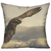 Eagle Sky Clouds Fly Grey Square Throw Pillows For Couch 46cm X 46cm