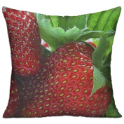 Strawberry Berry Sweet Ripe Designer Throw Pillows For Couch 46cm X 46cm