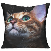 Kitty Kitten Cat Eyes Cute Comfort Throw Pillows For Couch 46cm X 46cm